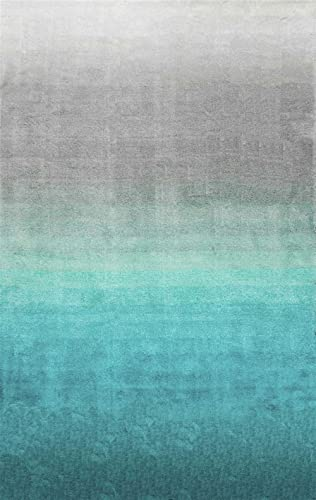 nuLOOM Shag Rectangle Area Rug 4 x6 Turquoise Ombre Collection