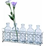Creative Co-op Farm Life 12.75-Inch Wire Holder with 5 Glass Bottles