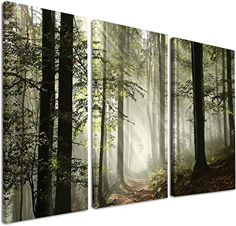 Amazon Com Designart Light In Dense Fall Forest With Fog Landscape Canvas Art Print 36x28in Multipanel 3 Piece 36x28 3 Panels Green Posters Prints