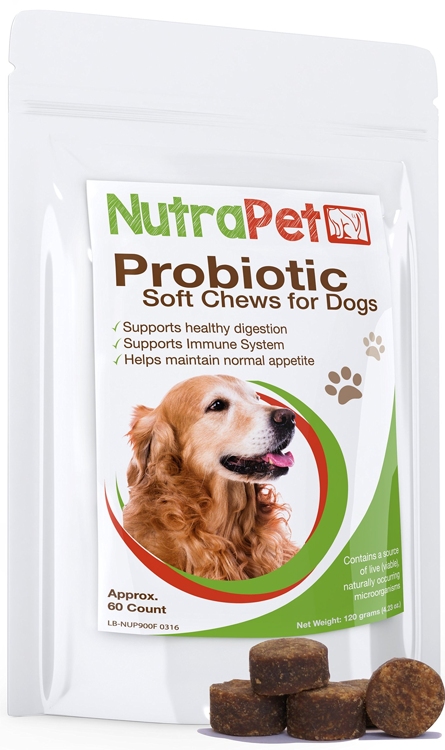 NutraPet Probiotics for Dogs Soft Chews - Digestive Health Supplement in a Tasty Treat - Delicious Chicken Liver Dog Probiotic That Your Pup Will Love! - 60 Count by NutraPet