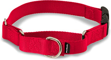PetSafe Martingale Dog Collar with Quick Snap Buckle