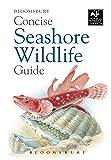 Concise Seashore Wildlife Guide (Wildlife Trust) (The Wildlife Trusts)