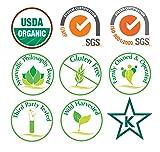 Ayush Herbs Ashwagandha Herbal Supplement, 120
