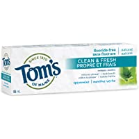 Tom's of Maine Clean & Fresh Fluoride Free Natural Toothpaste, Spearmint, 85 mL (1 Pack)