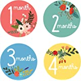Design Corral Floral Monthly Stickers For Baby - Baby Monthly Stickers - Baby Girl