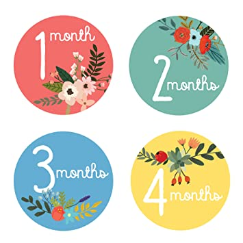 amazon co jp design corral floral monthly stickers for baby baby