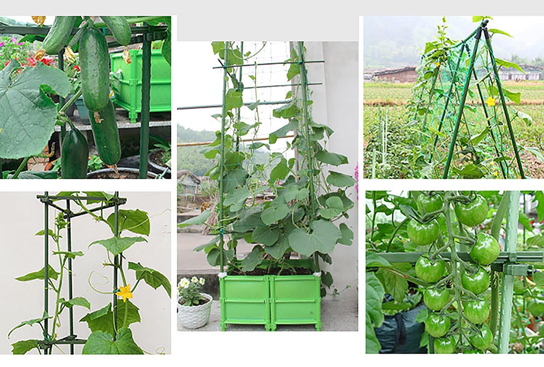 12 unidades) un ajustable Clip DIY Tomate jaula enrejado plantas ...