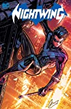 Nightwing Vol. 1: Knight Terrors (Nightwing: Knight Terrors)
