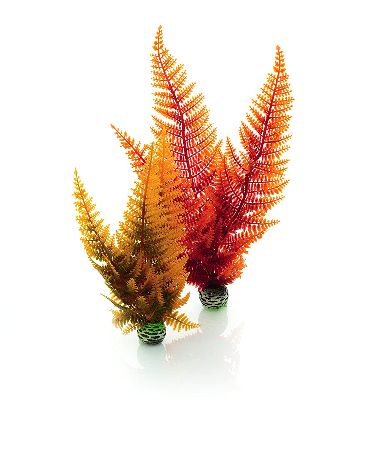 (Medium, Autumn Fern) biOrb Easy Plant Sets