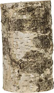 Walnut Hollow 7-inch Rustic Birch Pillar for Home Décor, Weddings, Candle Stands and Art & Craft Projects