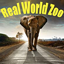 Real World Zoo