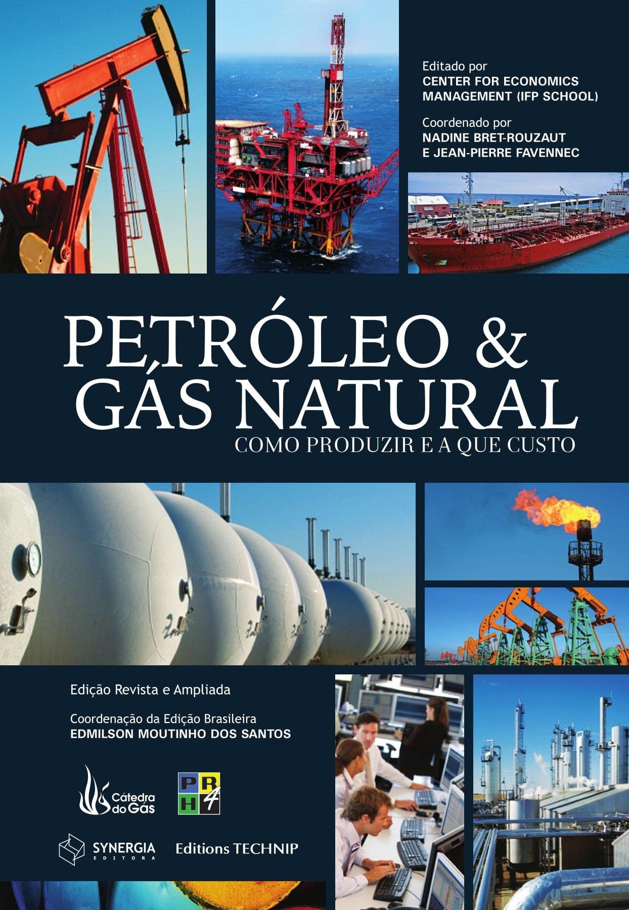 Read Online Petróleo e Gás Natural. Como Produzir e a que Custo PDF