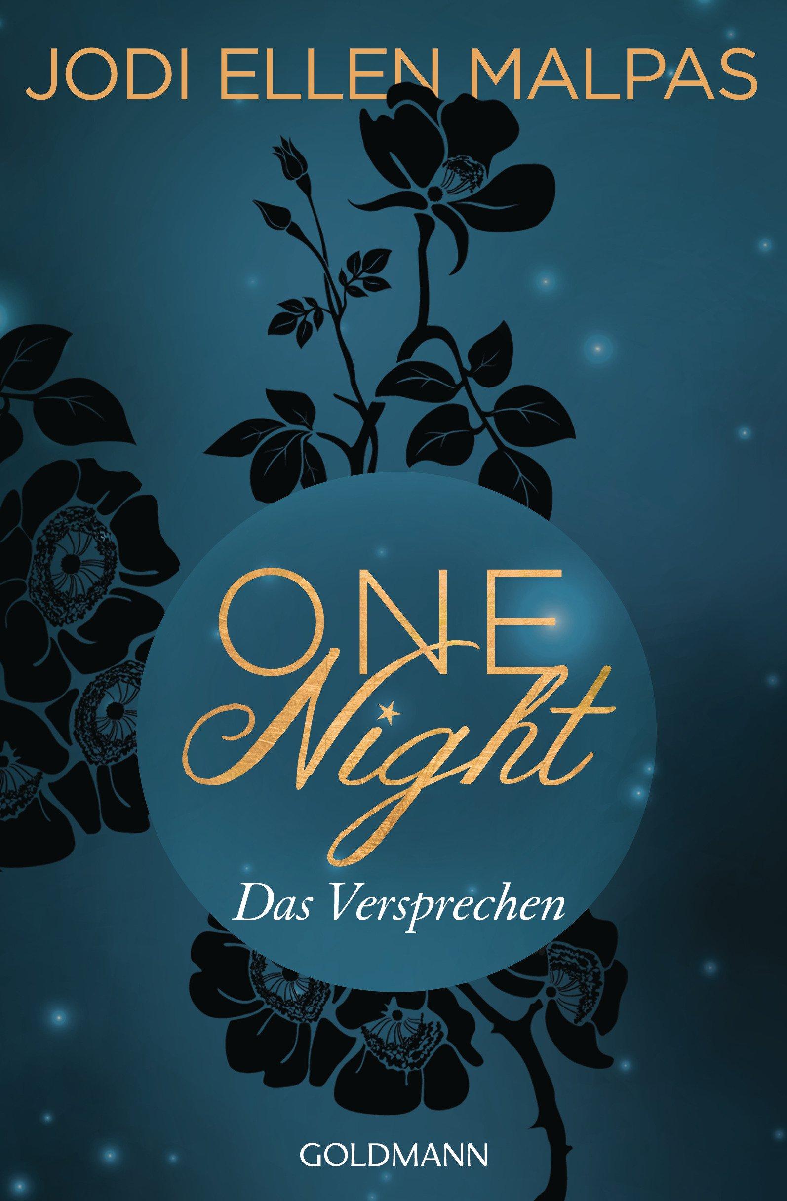 One Night - Das Versprechen: Die One Night-Saga 3