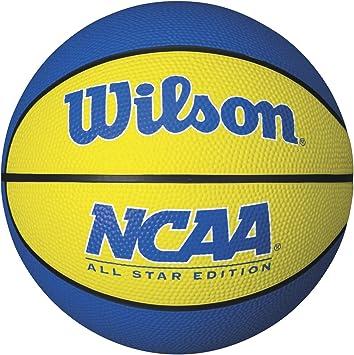 Amazon.com: Wilson NCAA Mini Team Balón de baloncesto ...