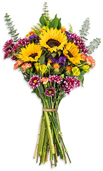 Amazon.com : Benchmark Bouquets Flowering Fields, No Vase (Fresh Cut on flower valentine crafts, flower jar crafts, flower boxes crafts, tiles crafts, flower vases for weddings, small flowers for crafts, artificial flower crafts, flower ball crafts, flower christmas ornament crafts, silk flower crafts, beaded flower crafts, flower mosaic crafts, flower pen crafts, flower garden crafts, ice cream bowl crafts, dried flower crafts, flower bed crafts, flower house crafts, flower seed crafts, box crafts,