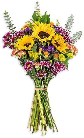 Amazoncom Benchmark Bouquets Flowering Fields No Vase Fresh Cut
