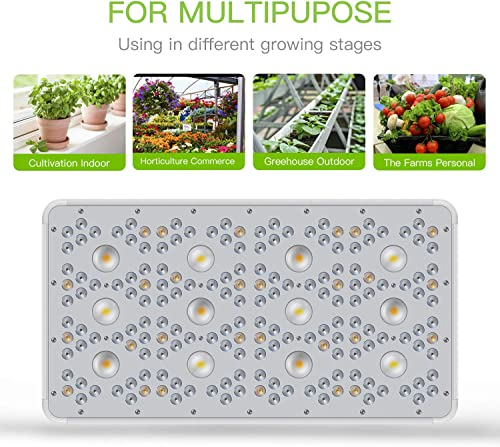 Beelux 3000W Grow Lights for Indoor Plants CREE COB LED Full Spectrum Veg and Flower 5x5ft Coverage with Dual Switch and Dual Chips Reflectors Monitor Adjustable Rope