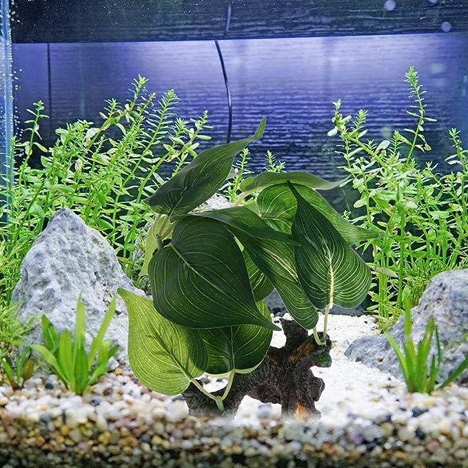 Dabixx Adorno para acuario de madera para acuario, diseño de pecera: Amazon.es: Hogar