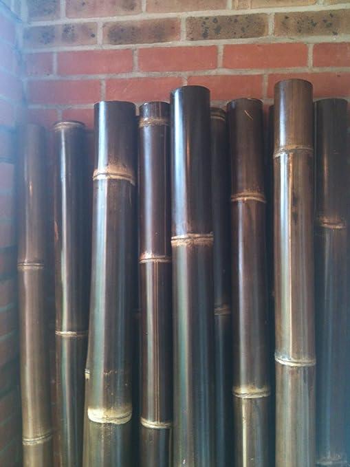 Best 4 Garden – 5 cañas de bambú decorativas, para uso interior y exterior.: Amazon.es: Jardín
