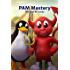 PAM Mastery (IT Mastery Book 10) (English Edition)