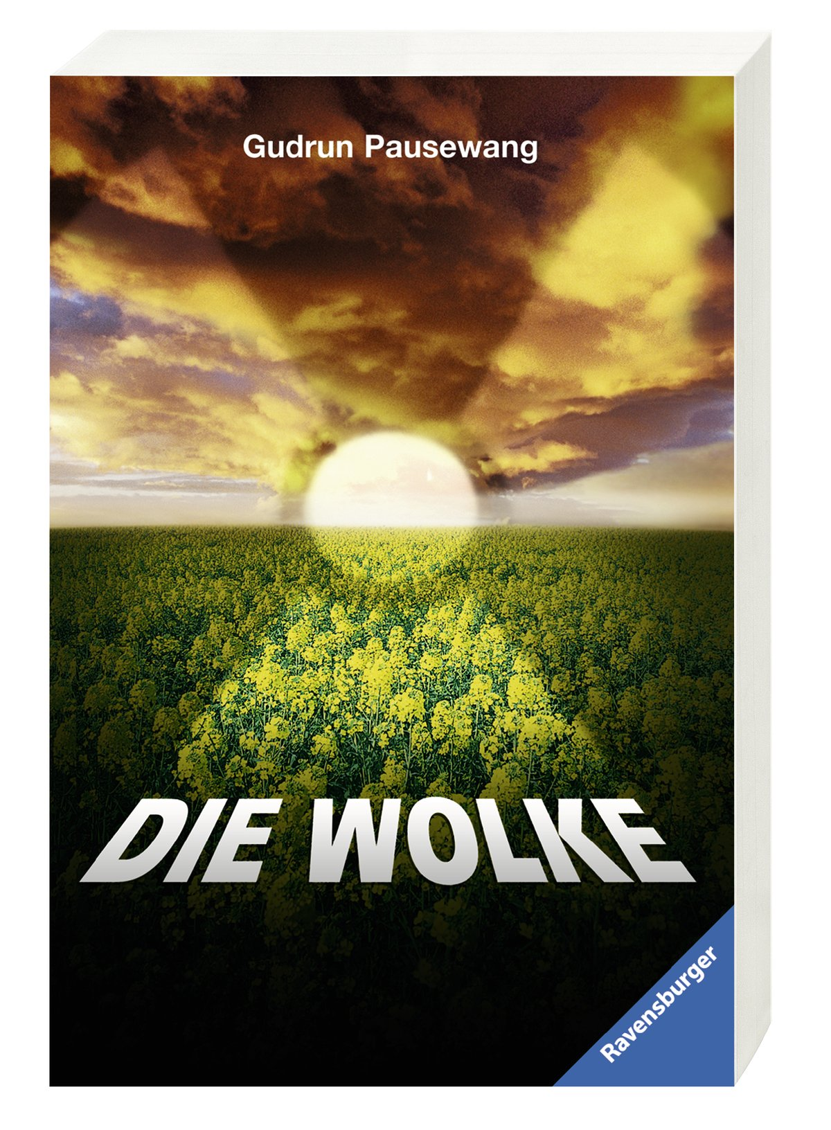 Die Wolke: Gudrun Pausewang: 9783473580149: Amazon.com: Books