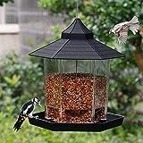 SAND MINE Panorama Bird Feeder, Hexagon Shaped with Roof Hanging Bird Feeder for Garden Yard Decoration (Black)