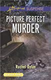 Picture Perfect Murder (Love Inspired Large Print Suspense)