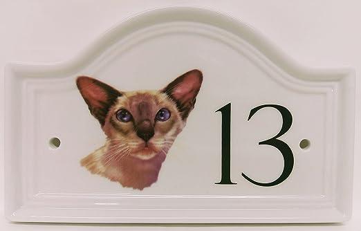 Rainbow Decors Ltd Gato siamés casa Puerta Número Placa de Gato siamés de cerámica Placa de número Cualquier número Disponible Decorada a Mano en el Reino Unido Entrega Gratuita Reino Unido: Amazon.es: