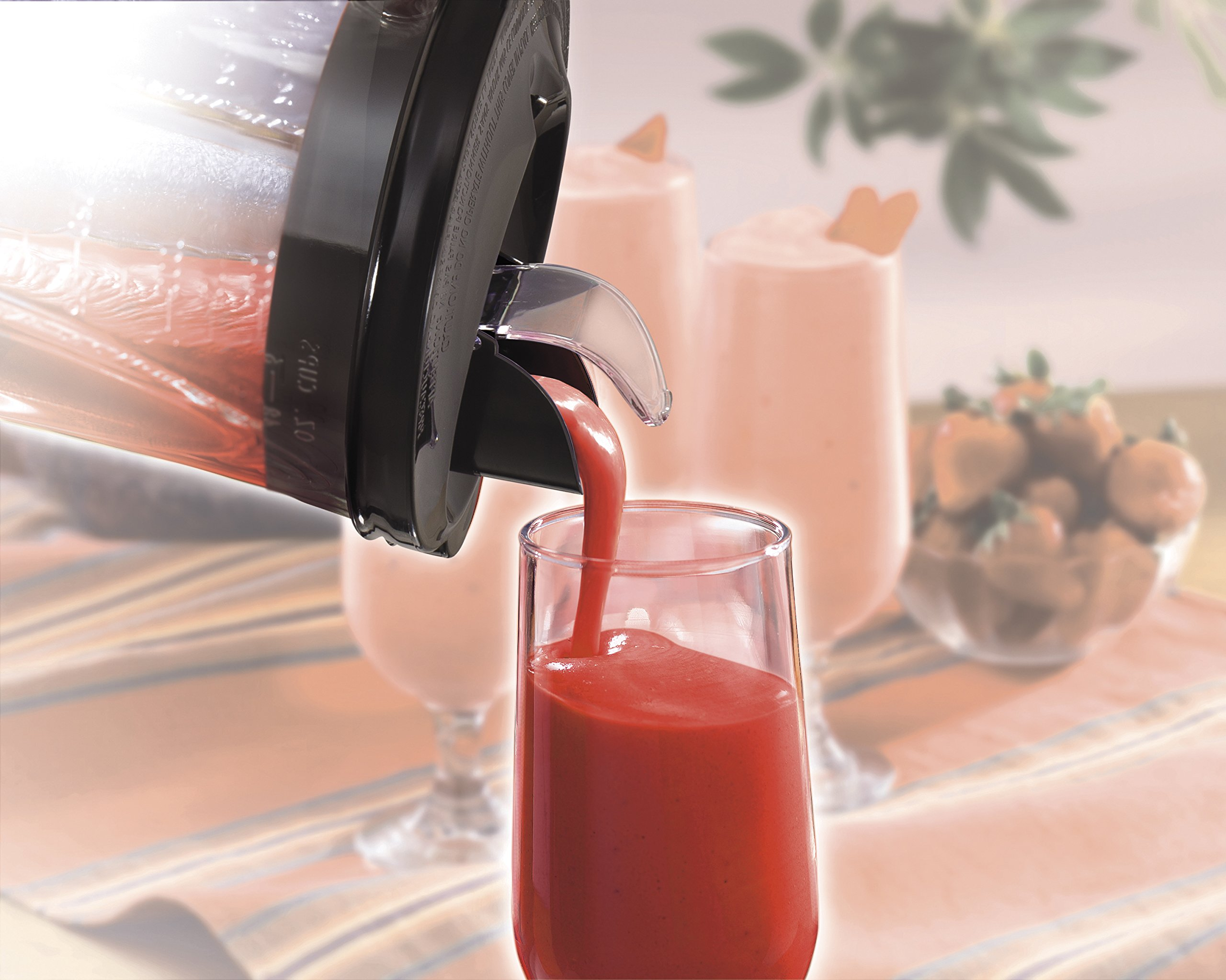 Hamilton Beach (58148A) Blender with Glass Jar, For Shakes & Smoothies, Multi function, Electric (58148A)