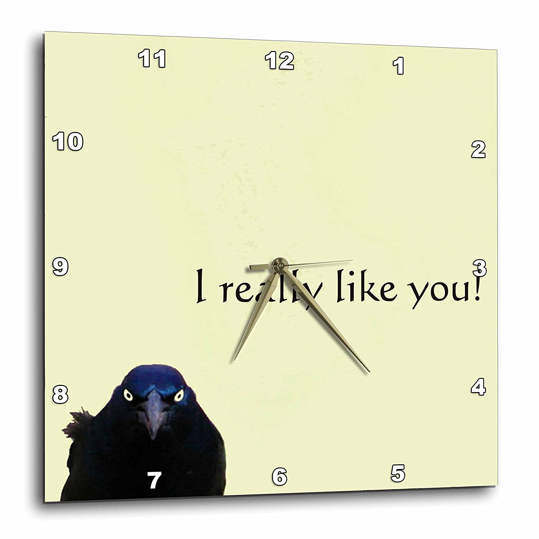 3dRose dpp/_11825/_2 Grackle 13 by 13-Inch I Really Like You Wall Clock