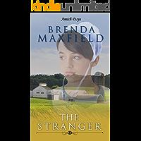Amish Days: The Stranger: An Amish Romance Short Story (Hollybrook Amish Romance)