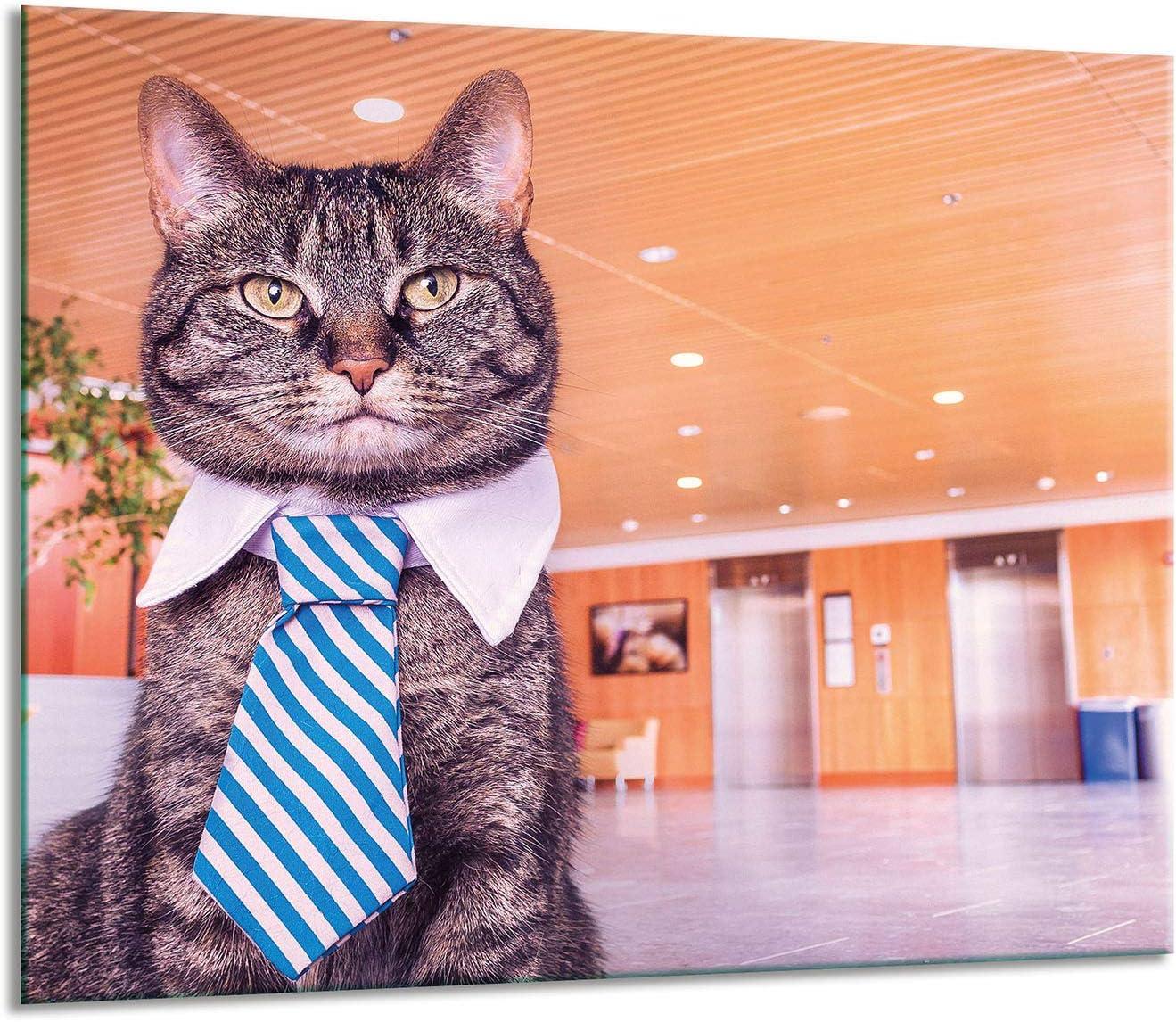 Herdabdeckplatten Ceranfeldabdeckung Spritzschutz Glas 60x52 Katze