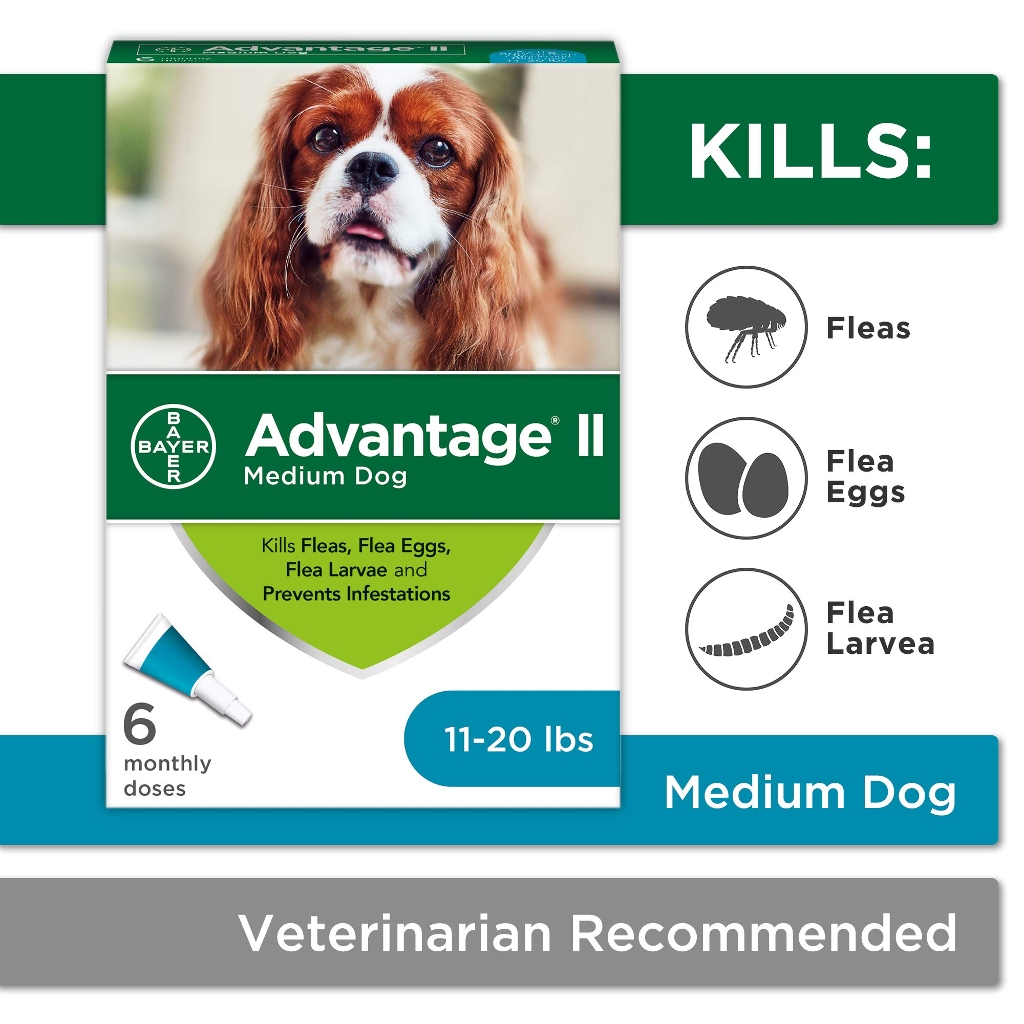 Flea and Lice Treatment for Dogs, 11-20 lb, 6 doses, Advantage II by Bayer Animal Health