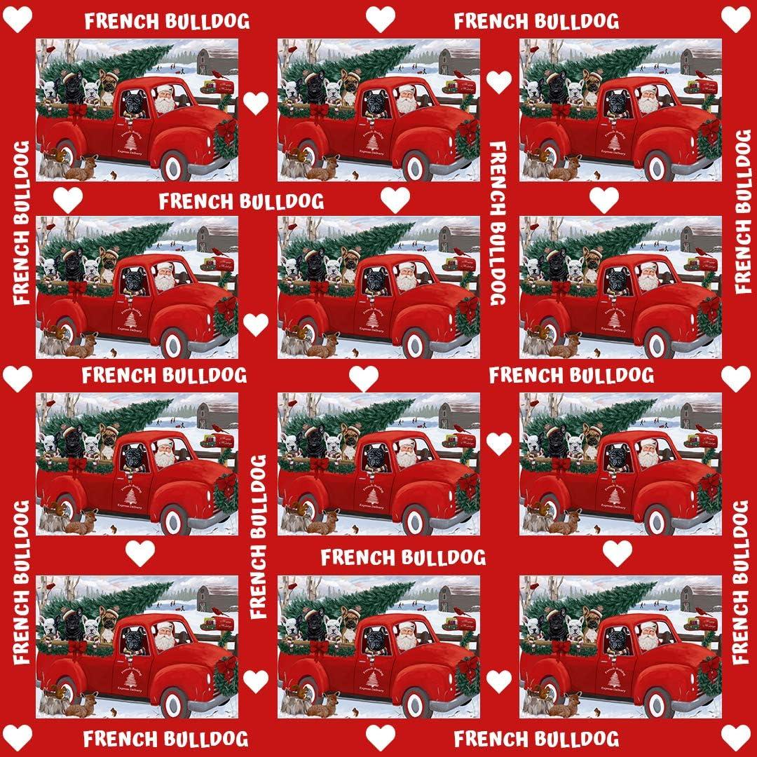 Christmas Santa Express Delivery Red Truck Dog /& Cat 17 Laptop Handbags Rhodesian Ridgeback