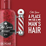 Old Spice, Shampoo and Conditioner 2 in 1, Fiji for Men, 25.3 fl oz, Twin Pack