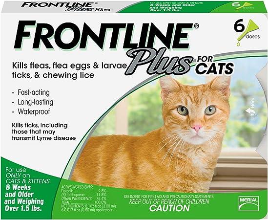Amazon Com Frontline Plus Flea And Tick Treatment For Cats Pet Flea Drops Pet Supplies