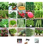 Set of 20 Pack Vegetable & Fruits Seeds with Watering Can, Planting Kits, Fertilizer 20 Varieties Create a Deluxe Garden All Seeds are Heirloom, 100% Non-GMO, 20 Pack