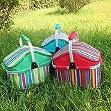 eTTg Insulated Folding Cooler Picnic Basket Bag Thermal Tote-Color Randomization