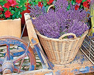 product image for Springbok's 1000 Piece Jigsaw Puzzle Basket of Lavender