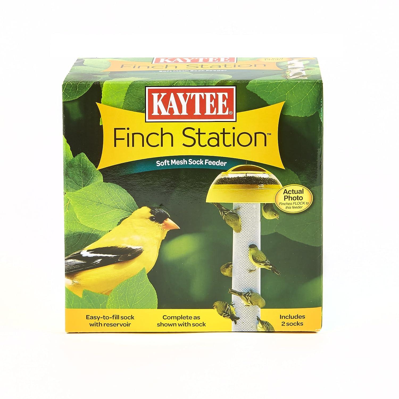 Kaytee Finch Feeder