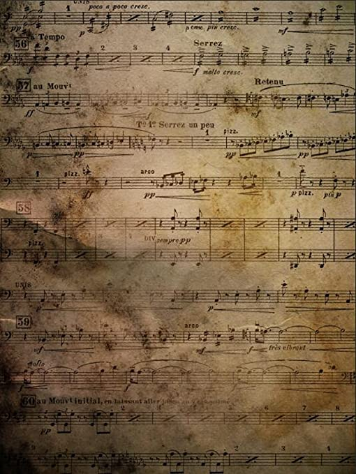 Musical Stage Photography Backdrop Music Notes On Vintage Brown Wall Booth Background For Photo Studio 6