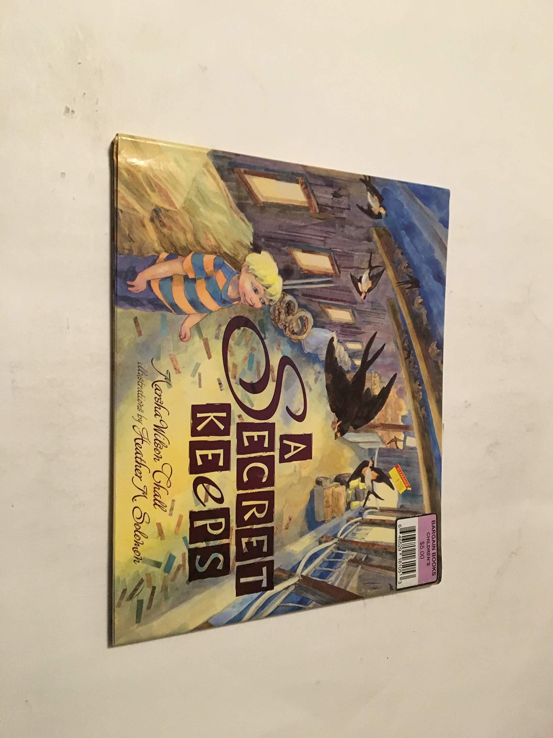 A Secret Keeps HARDCOVER Book