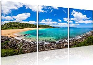 Natural art Tropical Bay Pictures Wall Art Island Landscape Paintings Art Canvas Framed for Office Cafe Bar Wall Decor 12x16 Inch 3 Panels