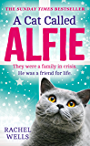 A Cat Called Alfie: The perfect book to warm your heart this Christmas