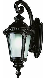 Trans globe lighting pl 5044 rt rust outdoor wall light wall porch trans globe lighting pl 5044 bk energy efficient outdoor lighting with fluorescent bulb aloadofball Gallery