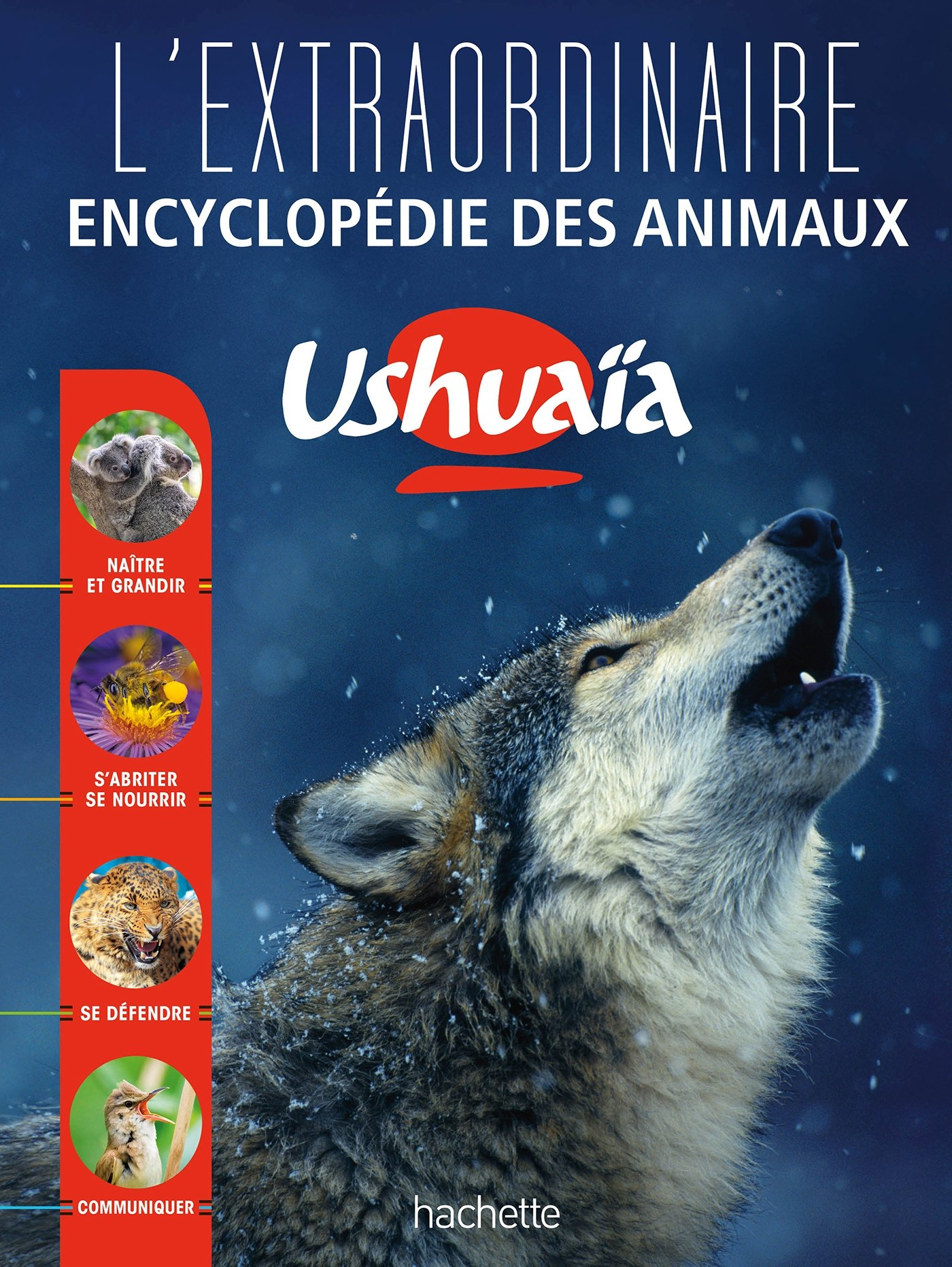 L'Extraordinaire encyclopédie Ushuaïa des animaux Relié – 12 octobre 2016 Collectif Hachette Éducation 2012903797 Ouvrage de référence