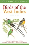Birds of the West Indies Second Edition: 143