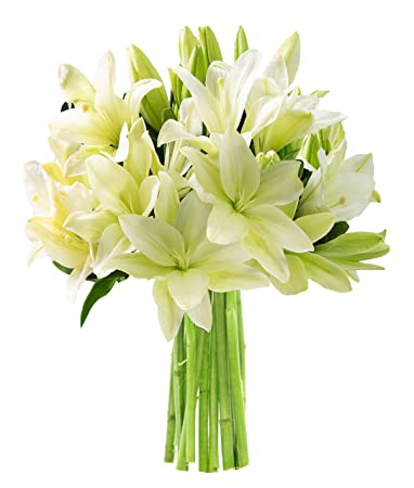 California Grown Collection: Bouquet of 10 Lilies and Lush Greens without  Vase