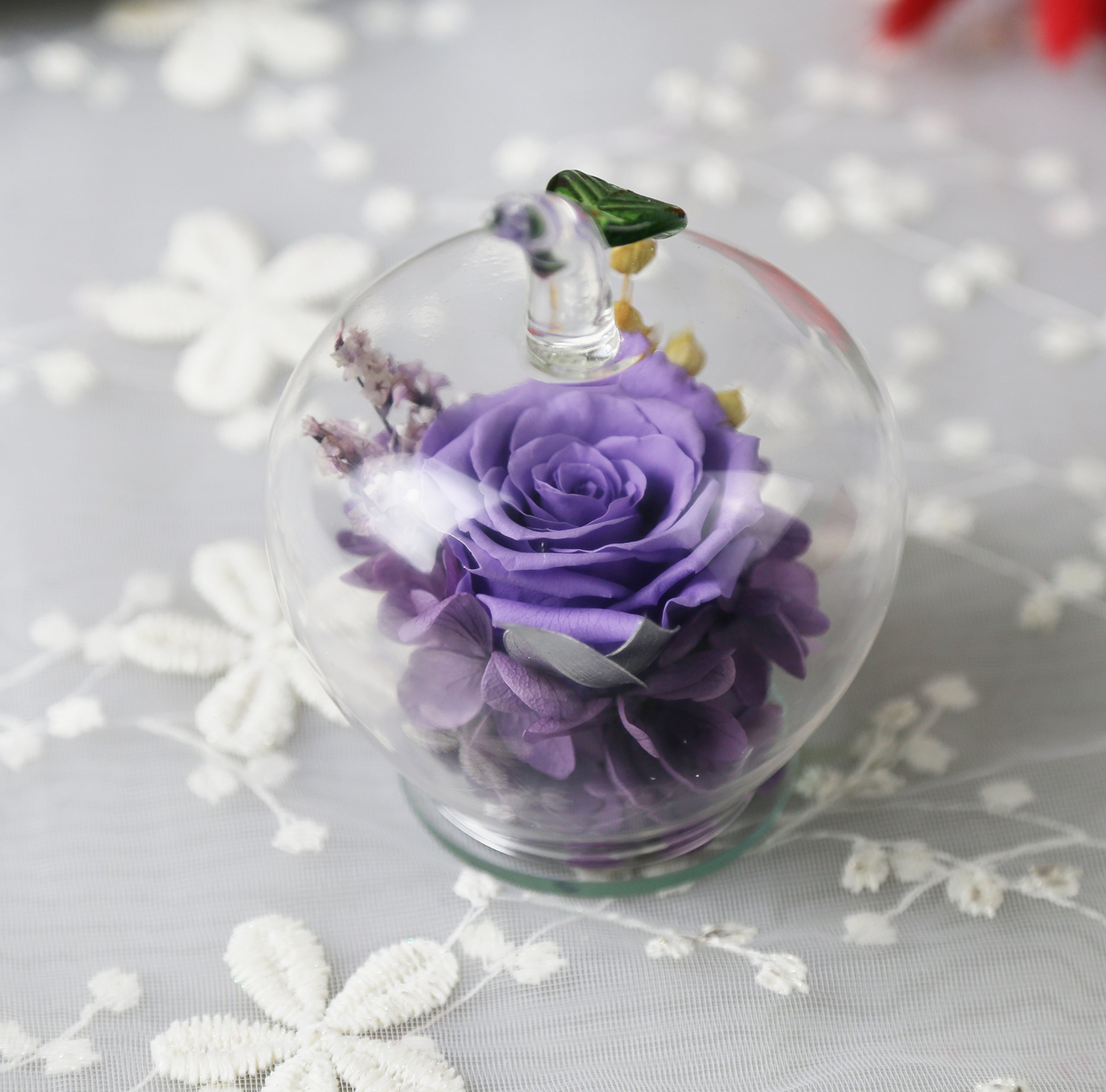 Amoleya Preserved Rose in Apple-shaped Glass,Gift on Valentine's Day, Mother's Day, Thanksgiving Day, Christmas, Birthday, Anniversary, Wedding