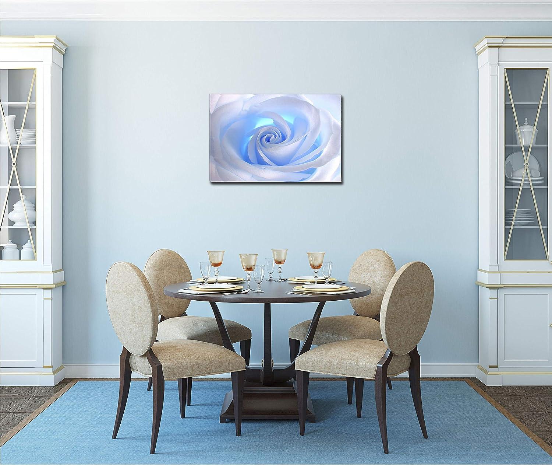 Startonight/Impression/sur/Toile Fleur Blanche Abstraite Rose Image sur Toile Tableau Nature- Decoration Murale Salon Moderne 60/x/90/cm